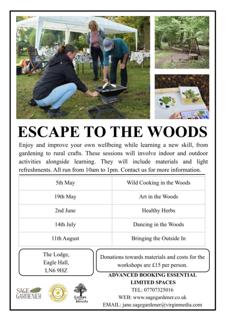 Escape to the Woods Programme
